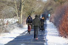 Enjoying a walk (Steenjep) Tags: vinter winter jylland danmark denmark sne snow herning dof sun sol reflex refleks depthoffield depthoffocus