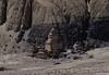 Mustang_117 (Oreste Villari) Tags: nepal tibet manthang mustang lho himalaya people architecture religions architettura