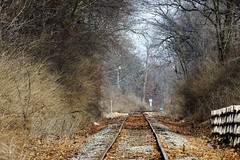 Tracks Along the Fox (Patricia Henschen) Tags: redoak naturecenter foxvalley parkdistrict bataviaillinois batavia illinois foxriver foxvalleyparkdistrict railroad tracks