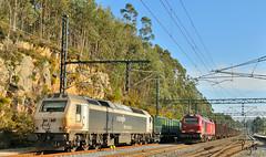 Uxes (***REGFA***) Tags: takargo renfe adif uxes rebase train tren comboio comsa madera basura ejeatlantico mercancias mercadorias ibericargo euro400 6000