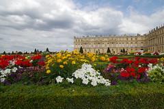 Versailles, Jardins, 16/08/2015 (jlfaurie) Tags: flowers parque summer france castle fountain statue garden soleil king fuente jardin versailles été estatua fontaine château castillo roi louisxiv mechas yvelines jlfr mpmdf 1682015