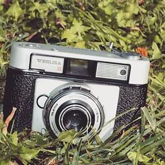 #camera #nature #werlisa #60's #35mmfilm  (jenniferespert) Tags: camera nature 35mmfilm 60 werlisa uploaded:by=flickstagram instagram:photo=8796965536033265421360532647