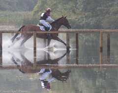 Blyth Tait on Bear Necessity V (kimbenson45) Tags: red horse white motion reflection nature water sport race movement action competition racing crosscountry reflected ripples rippled rider waterway gallop splashing competitor galloping cci3 blythtait bearnecessityv blenheimpalaceinternationalhorsetrials2015