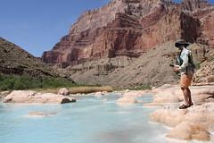 Grand Canyon 2015 634