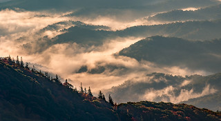 Autumn Dawning
