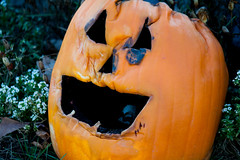 Fading Fast (Jules (Instagram = @photo_vamp)) Tags: decorations halloween cemetery graveyard pumpkin jackolantern hemlockmichigan richlandtownshipcemetery