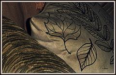 Textura (o.dirce) Tags: textura almofada desenho estampa tecido
