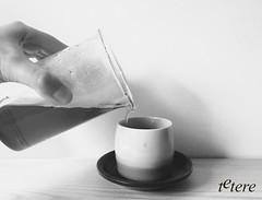 Disfrutando mi t favorito, t Puerh. (Tetere Barcelona) Tags: tea te teacup teatime cha shu puerh puerhtea teameet chaxi teaart puercha teteriabarcelona tetereria teamoment puerhripe tepuerh tiendatebarcelona puerhcooked tearelax