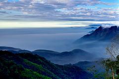 南投溪頭附近的雲海[Sea of clouds at Nantou] (Jumping5566) Tags: sea foggy 南投 溪頭 stratus 杉林溪 雲海 clouse 層雲 nantous