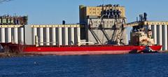 November Grain (beverlyks) Tags: grain terminal greatlakes salty tugboat shipping lakesuperior richardson federalshimanto richardsongrainterminal thunderbayoncanada pointvaolour