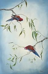 Crimson Rosella (Alison Anker) Tags: bird art crimson rosella