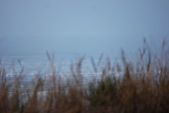 Plage de Biscarosse (Kusanar_NX) Tags: vague plage ocan landes aquitaine gironde