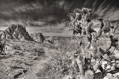 December Sky (magnetic_red) Tags: sky blackandwhite mountains landscape desert joshuatree dramatic trail redrock americanwest cloulds openspaces