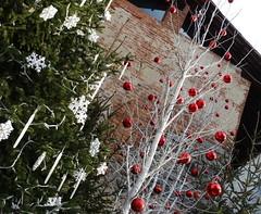 Sereno Natale a tutti gli amici, vicini e lontani...