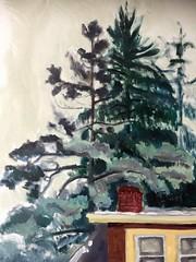 Roof and Trees (Handwork Naturals) Tags: catskill newyork village pines neighborhood hudsonvalley edenscovillehart