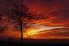 special (Lutz Koch) Tags: sunset sonnenuntergang himmel badcamberg taunus sundown sky landschaft landscape evening afternoon abends abend nachmittag winter spektakulär spectacular elkaypics lutzkoch sony alpha6000 sonyilce6000