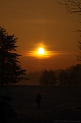 Tervuren.Belgium (Natali Antonovich) Tags: tervuren belgium belgie belgique winter nature christmasholidays christmas landscape sun snow frost