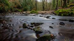 2017-01-17 Rivelin-7425.jpg (Elf Call) Tags: nikon rivelin river yorkshire water stream 18105 sheffield steppingstones waterfall d7200 blurred
