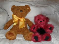 Rusty and Pick (zaramcaspurren) Tags: charliebears steiff steiffbears teddybear teddybears teddies stuffedtoy stuffedtoys stuffedanimal stuffedanimals plush plushtoy plushies plushtoys plushie