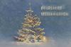Weihnachtsbaum Explore #29 (Simone Schloen ☞ www.bilderimkopf.de) Tags: weihnachten weihnachtsbaum schnee sterne himmel blau lichterchristmas christmastree snow stars sky blue lights
