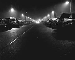 What the fog are you doing here? (floressas.desesseintes) Tags: berlin prenzlauerberg kollwitzstrase nebel fog silhouette silhouettes kontrast contrast nachtaufnahme streetfotografie schwarzweis