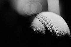Hardball (GOJR.) Tags: bw blackwhite macro micro lightpanting lowkey analog rodinalsemistand film kodak125px nikonmicronikkorpcauto55mmf35 nikonf2