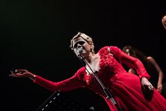 """""""Appunti musicali dal mondo:confini e sconfini del suono della voce"""" (ciccilla priscilla (Anna Vilardi)) Tags: tosca appuntimusicalidalmondo tizianatoscadonati nicolapiovani gabrielemirabassi germanomazzocchetti """"danilo rea"""" """"joe barbieri"""" """"gege telesforo"""" auditoiumroma annavilardi """"massimo venturiello"""" liveconcert livemusic live livetour musica musicsbest music musiclive giovannafamulari""""massimo de lorenziermanno dodaro roma"""