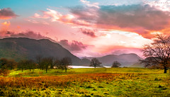 Lake District (Chiara Normanno) Tags: england united kingdom lake district cumbria landscape sunset edit nikon nature trees grass moors clouds