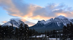 lake Louise (drafiei1) Tags: lake louise lakelouise landscape mountain sky snow trees tree scenery seine outdoor winter cold