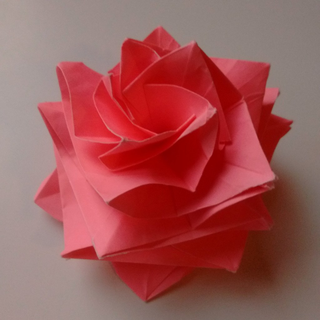 The worlds most recently posted photos of origami and rose flickr test fold a miura ken beauty rose robert lang opus 482 mightylinksfo