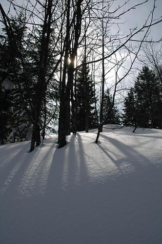 Hochälpele, Vorarlberg, Österreich