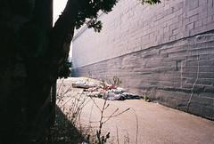 Photo (Drew Stefani) Tags: camera film oregon 35mm portland photography drew photographers artists ton stefani weighs tumblr