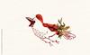 tumblr_n8eufnfJGT1rqcmjzo10_540 (ranflygenring1) Tags: illustration iceland drawing illustrations nordic scandinavia reykjavík ran rán flygenring ránflygenring ranflygenring icelandicillustrator flygering icelandicillustrators nordicillustrators