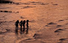 Evening Swim (Dalliance with Light (Andy Farmer)) Tags: ocean sunset people water silhouette reflections landscape golden us newjersey unitedstates dusk shore raritanbay oldbridgetownship