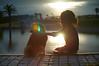 娘と柴犬 (falhorse) Tags: sunset bokeh sony shibainu shiba kanagawa 海 inu 湘南 神奈川県 柴犬 ボケ こども nex6 レデューサーレンズ