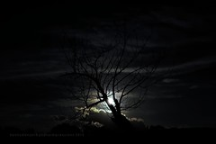 Early Morning Moonset (Konny D.) Tags: moon clouds lune mond luna lua moonlight moonset luar mneskinn ksiyc lunam mehtap clairdelune maanlicht mondlicht  chiarodiluna monduntergang kuutamo luzdelaluna mnelys mnsken  cloudlines    wolkenlinien msnsvtl