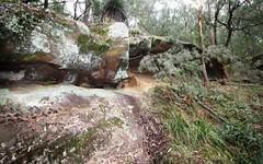680 Brokenback Trail, Cedar Creek NSW