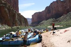 Grand Canyon 2015 590