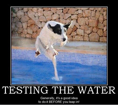 Always Test the Waters (Chikkenburger) Tags: posters memes demotivational cheezburger workharder memebase verydemotivational notsmarter chikkenburger