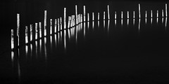 I Seven IIII (Mat-S) Tags: longexposure autumn blackandwhite lake fall noiretblanc lac minimalism darkwater chambry hitech stake bourget rhonealpes piquet expositionlongue nd1000 silverefexpro bigstopper
