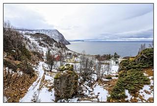 Lille Vinje, Dyrøya