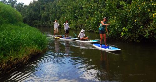 2015 Kauai Paddle Adventure  (97)
