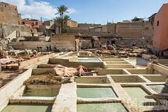La conceria di Marrakech (Dario Ma) Tags: africa street people market tag un marocco marrakech souk medina mercato strade botteghe concerie aggiungi