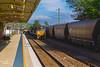 Coal & Grain Trains (Kev Walker ¦ 8 Million Views..Thank You) Tags: architecture train canon transport australia railwaystation nsw 1855mm coal longest hdr huntervalley muswellbrook artc railwaylines hunterregion plantform kevinwalker canon1100d