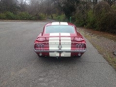 "1968 Mustang • <a style=""font-size:0.8em;"" href=""http://www.flickr.com/photos/85572005@N00/23546533022/"" target=""_blank"">View on Flickr</a>"