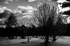 on profite du soleil (cedric.simonot) Tags: nature paysage neige hivers nikond7000 1685mm