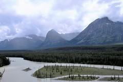 Athabasca River (Patricia Henschen) Tags: icefieldsparkway jaspernationalpark park parks parcs parkscanada canada nationalpark alberta mountains mountain clouds glacier northern rockies rocky canadian canadianrockies river athabasca