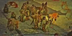 "NEPAL, Kathmandu,  Stupa von Swayambhunath, Affenbande , 15148/7838 (roba66) Tags: reisen travel explore voyages urlaub visit roba66 nepal asien südasien asia city stadt capitol kathmandubefore earthquake ""stupa von swayambhunath"" stupa swayambhunath tempel tempelanlage eastasia temple tier tiere animal animals creature affe primate baboon monkey ape apes monkys makaken textur texture effecte"