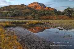 Clair Dawn (5) (Shuggie!!) Tags: grasses hdr highlands hills landscape morninglight mountains pine reeds reflections scotland torridon trees westerross zenfolio karl williams karlwilliams