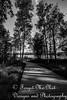 IMG_8526-2 (Forget_me_not49) Tags: alaska alaskan wasilla lakes lucillelake boardwalk pier sunrise waterways